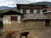 Paro farmhouse